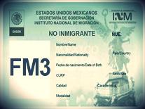 VISA FM3-Importación a Mexico